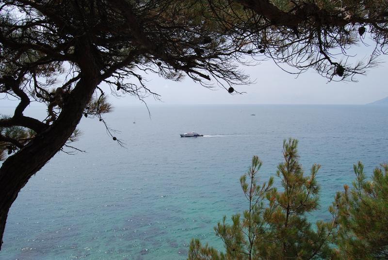 Вид из окна на побережье Черного моря